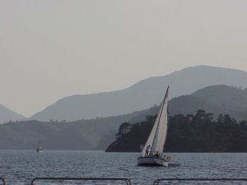 Happy Sailers
