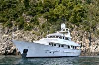 Sealion in the Mediterranean