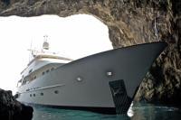Sealion in Cave on Capri Island