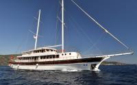 Mega Yacht B&B
