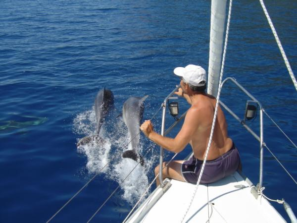 A Friend of dolphins