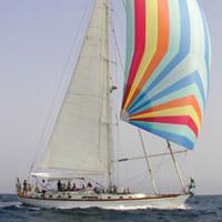 Lisme on Solent Charter